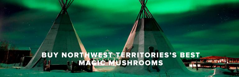 Buy Northwest Territories Best Magic Mushrooms