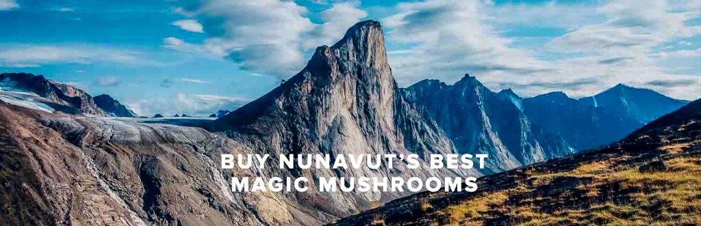 Buy Nunavut's Best Magic Mushrooms