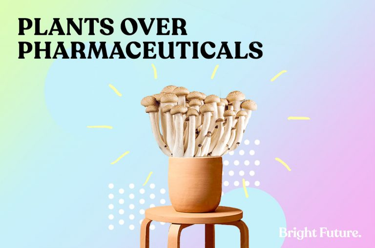 Plants over pharmaceuticals and the frenzy towards medicinal mushrooms