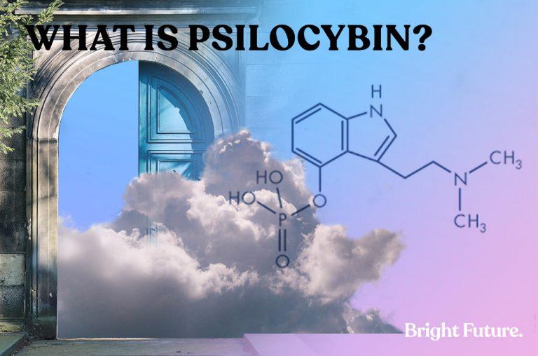 a-photo-talking-about-psilocybin-mushrooms