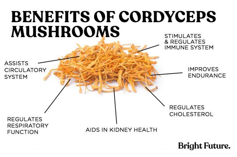 benefits of coryceps mushrooms