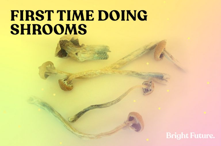 Your First Time Doing Shrooms: A Complete Survival Guide