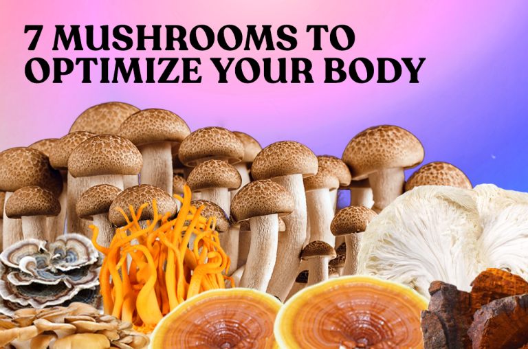 The Ultimate Performance Hack: 7 Mushrooms To Optimize Your Body