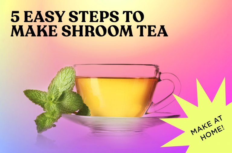 Read more about the article Shroom Tea At Home In 5 Easy Steps